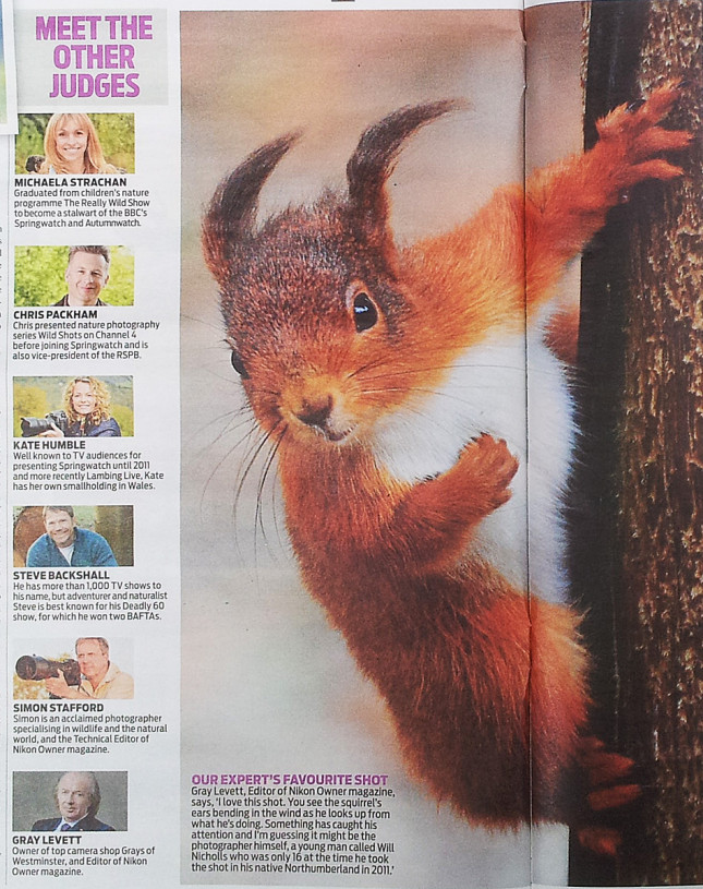 Daily-mail--Great-British-Wildlife-Competition-inside-1